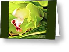 Orchid With Yellow And Green 2 Greeting Card