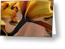 Orchid Yellow Greeting Card
