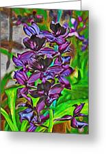 Orchids 1714 Greeting Card