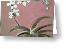 Orchids 2 Greeting Card