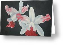 Orchids In Flight Greeting Card
