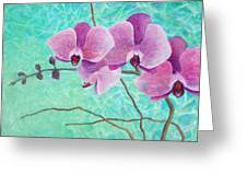 Orchids In Pink Greeting Card