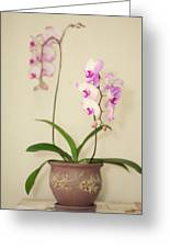 Orchids On Sideboard Greeting Card