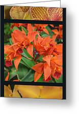 Orchids Vertical Triptych Greeting Card
