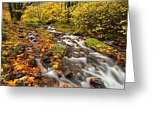 Oregon Autumn Beauty Greeting Card