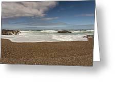 Oregon Coast- 5 Greeting Card