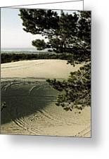Oregon Dunes 3 Greeting Card