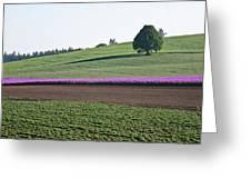 Oregon Flower Farm Greeting Card