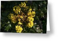 Oregon Grape Flowers Greeting Card