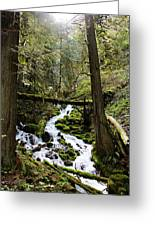 Oregon River Greeting Card