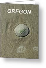 Oregon Sand Dollar Greeting Card