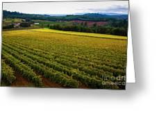 Oregon Wine Greeting Card