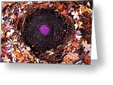 Organize Purple Berries Greeting Card