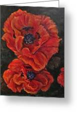 Oriental Poppys  Greeting Card