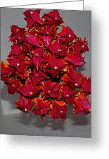 Origami Flowers Greeting Card