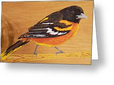 Oriole 3 Greeting Card
