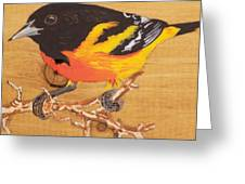 Oriole 4 Greeting Card
