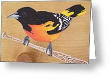 Oriole 5 Greeting Card