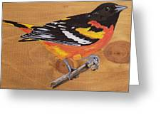 Oriole 7 Greeting Card