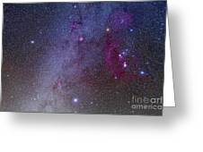 Orion And Canis Major Showing Dog Stars Greeting Card