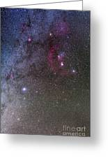 Orion And Canis Major With The Dog Star Greeting Card