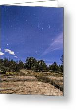 Orion And Sirius Rising Greeting Card