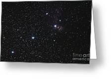 Orions Belt, Horsehead Nebula And Flame Greeting Card by Luis Argerich