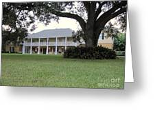 Ormond Plantation Greeting Card