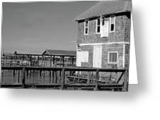 Ormond Yacht Club Black And White Greeting Card