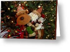 Ornament 234 Greeting Card