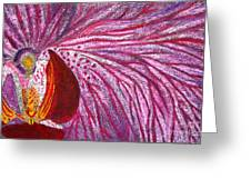 Orquidea Rosa Greeting Card