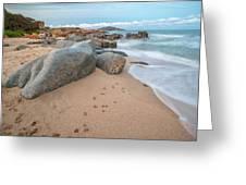 Orri Beach Greeting Card