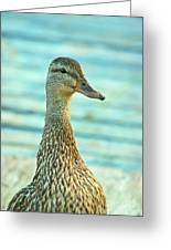Oscar Le Canard Greeting Card