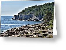 Otter Cliffs In Acadia National Park - Maine Greeting Card