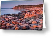 Otter Cliffs  Greeting Card