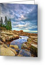 Otter Point Reflections Greeting Card