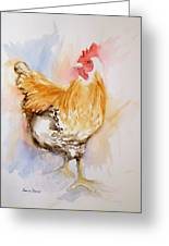 Our Buff Rooster  Greeting Card