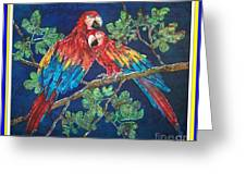 Out On A Limb- Macaws Parrots - Bordered Greeting Card