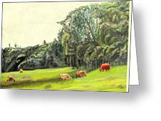 Out To Pasture Greeting Card