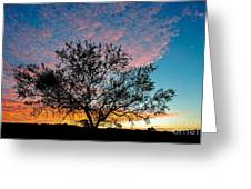 Outback Sunset Pano Greeting Card