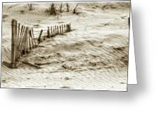 Outer Banks Beach Sand Fence  Greeting Card