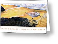 Outer Banks Sanderling Greeting Card by Bob Nolin