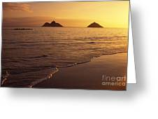 Outrigger Canoe Paddlers Greeting Card