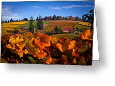 Over The Durant Vineyards Greeting Card