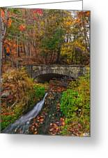 Over The Stream Greeting Card