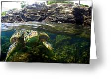 Over Under Honu Greeting Card