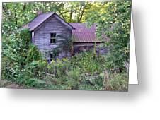 Overgrown Abandoned 1800 Farm House Greeting Card
