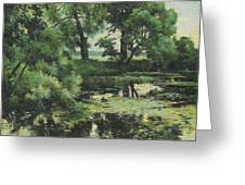 Overgrown Pond Greeting Card