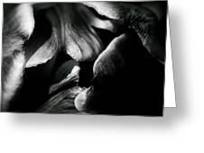 Overlap-black And White Greeting Card