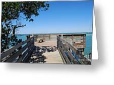 Overlooking Sarasota Bay Greeting Card